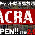【BACRA】日本最大級のキャットファイト動画見放題サービスがついにOPEN!!